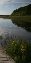 brygga-sol-dag_x2_1
