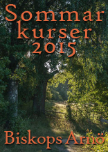 Sommarkurser-2015---156-pix2